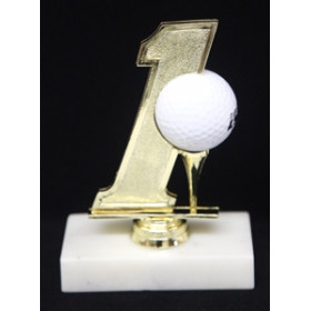 Hole in One Golf Ball Display Trophy